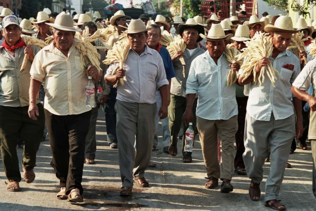 Comunidad Juchitecas 13