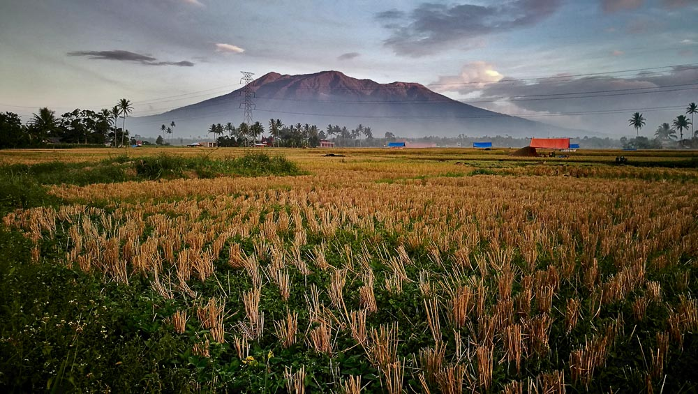 Comunidad Minangkabau 19