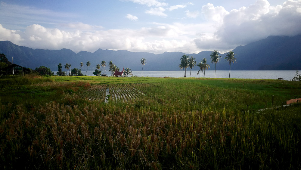 Comunidad Minangkabau 2