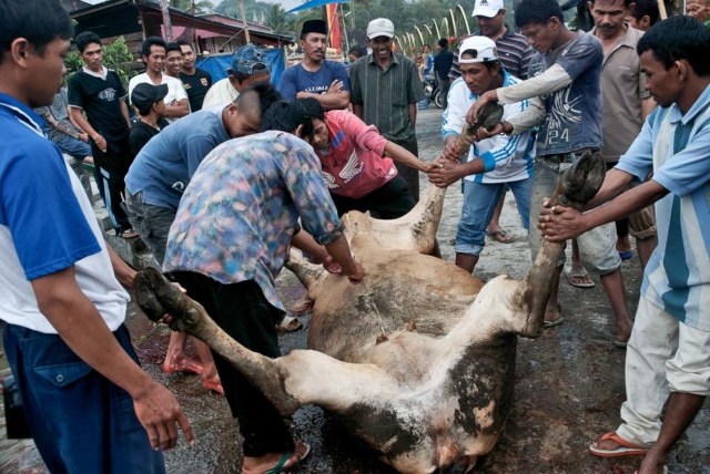 Comunidad Minangkabau 23