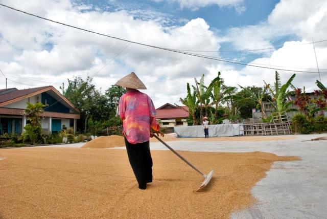 Comunidad Minangkabau 6